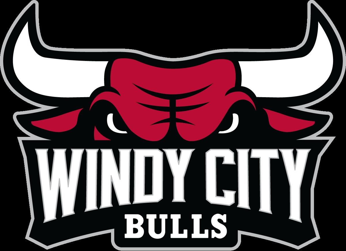 Bulls D League
